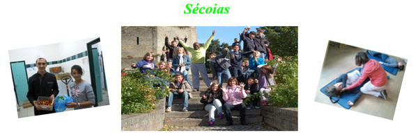 secoias